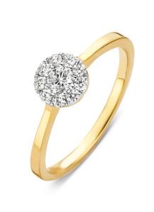 Diamond Point Gouden ring, 0.30 ct diamant, Hearts & Arrows