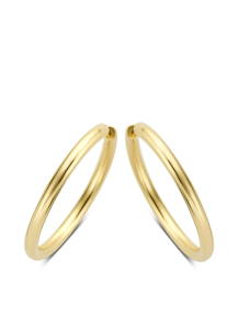 Diamond Point Timeless treasures earrings in 14 karat yellow gold