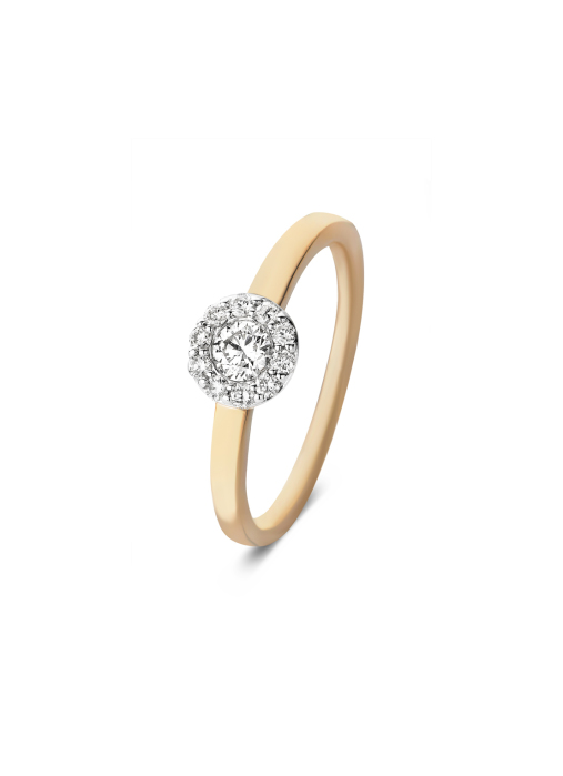 Diamond Point Solitair ring in 14 karat rose and white gold