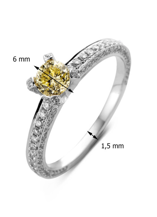 Diamond Point Witgouden ring 0.50 ct diamant Solitair