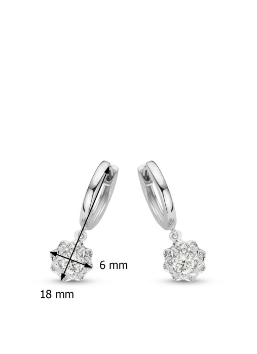 Diamond Point Hearts & arrows earrings in 18 karat white gold