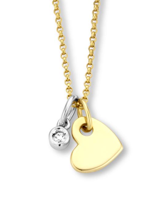 Diamond Point Symbols Anhänger in 14 karaat geel- en witgoud