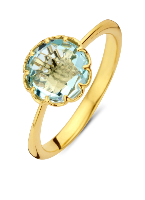 Diamond Point Earth Ring in 18K Gelbgold