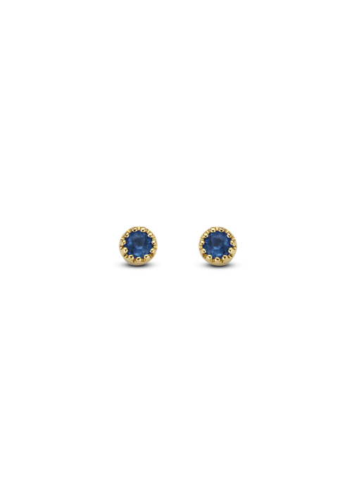 Diamond Point Joy earrings in 14 karat yellow gold