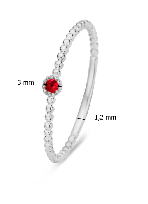 Diamond Point Witgouden ring 0.04 ct robijn Joy