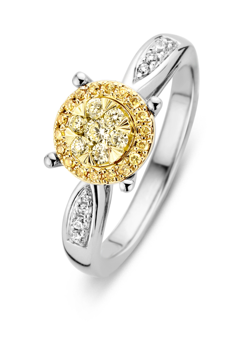 Diamond Point Gouden ring, 0.33 ct diamant, Enchanted