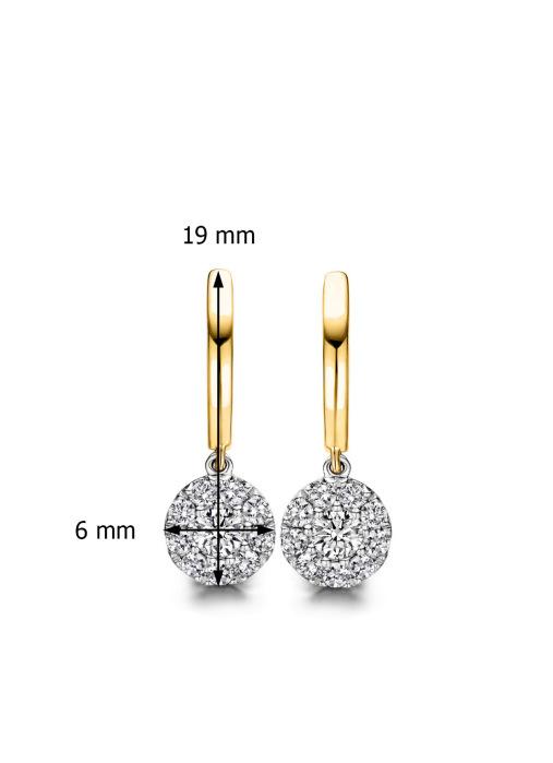 Diamond Point Hearts & arrows earrings in 18 karat yellow and whitegold