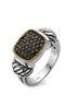 Diamond Point Brown Ring in Silber und 18K Gold