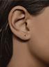 Diamond Point Roségouden oorsieraden, 0.10 ct robijn, Joy