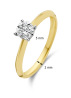 Diamond Point Enchanted Ring in 14K Gelbgold mit Weißes Rhodium
